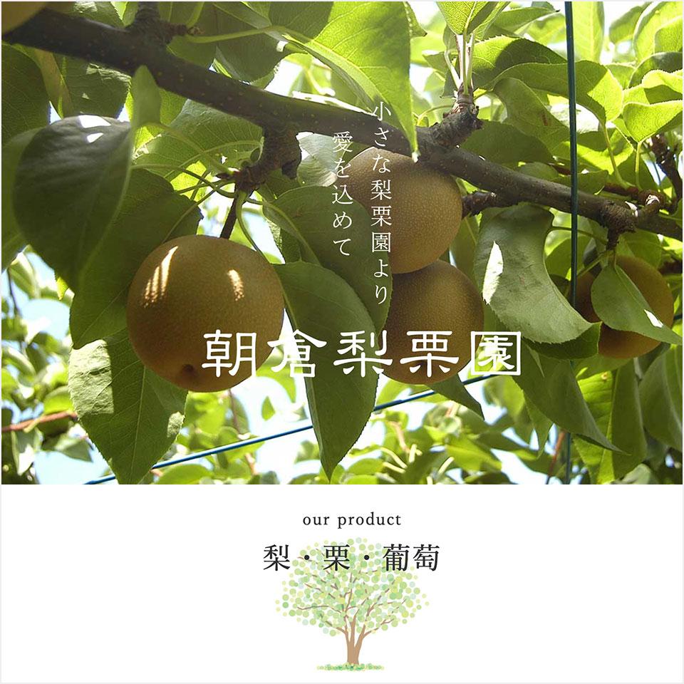 福井県の果樹園「朝倉梨栗園」